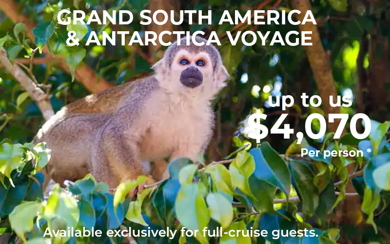 Holland Grand South America & Antarctica Voyage - Available exclusively for full-cruise guests. A value of up to us$4,070 per person.*