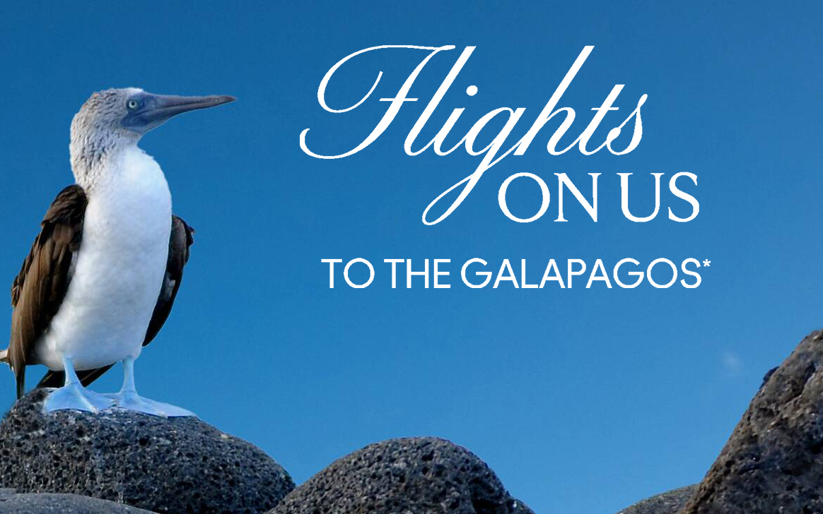 When you book your next Galapagos getaway with Celebrity Cruises, we'll get you there with airfare included*